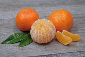 Clementine Corse automne