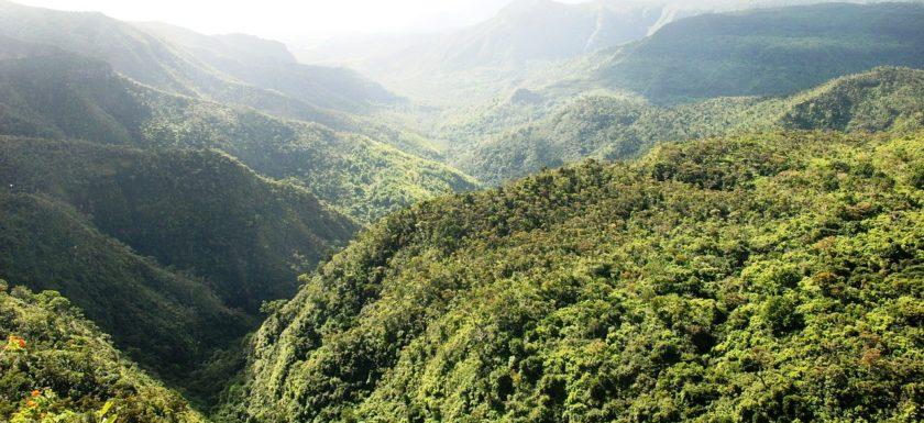 Ile Maurice Canyon
